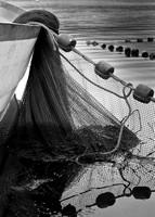 Seine Fishing